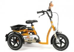 Tricycles for children with special needs